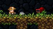 Legendary game Spelunky is now available for free on Funky Potato Games! As Spelunker, your goal is to explore the system of underground tunnels and caves, gathering […]