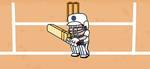 CRICKET ALL ROUNDER