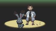 An extended version of the Pokémon for Game Boy Advance. Enjoy the adventures in the Pokémon land, catch all the monsters and win all duels. A perfect game […]