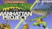 The third TMNT game on the NES platform – this time the evil Shredder has taken your reporter friend as a hostage and turned the whole Manhattan into […]