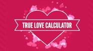 If you're in love, you can learn if the other person is a good match for you… using this smart True Love Calculator! Just enter your first names […]