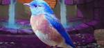 WESTERN BLUEBIRD ESCAPE