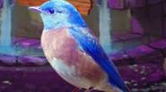 While wandering around the forest, you found a bluebird, caught in a cage. You have to release him – just look for hidden objects and clues to solve […]