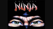 THE LAST NINJA is one of the best isometric 3D games of 80's… and here we have a NES version, which actually is THE LAST NINJA 2 from […]
