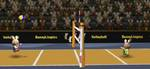 bunnylimpics-volleyball